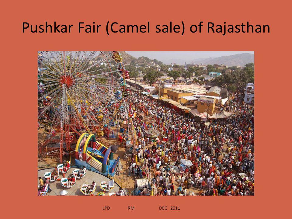 Pushkar Fair (Camel sale) of Rajasthan