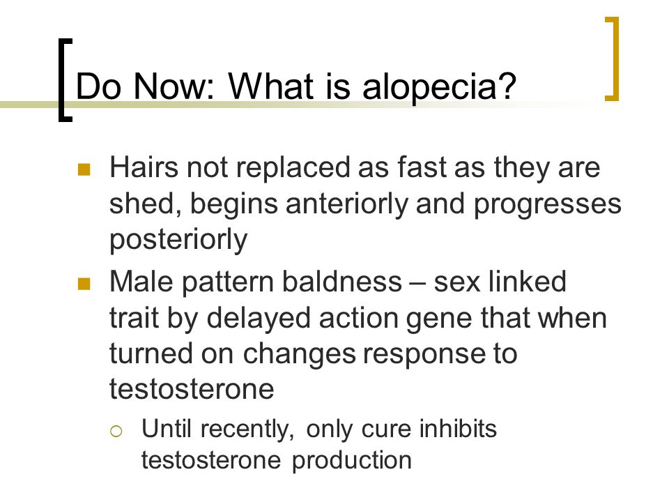Do Now: What is alopecia