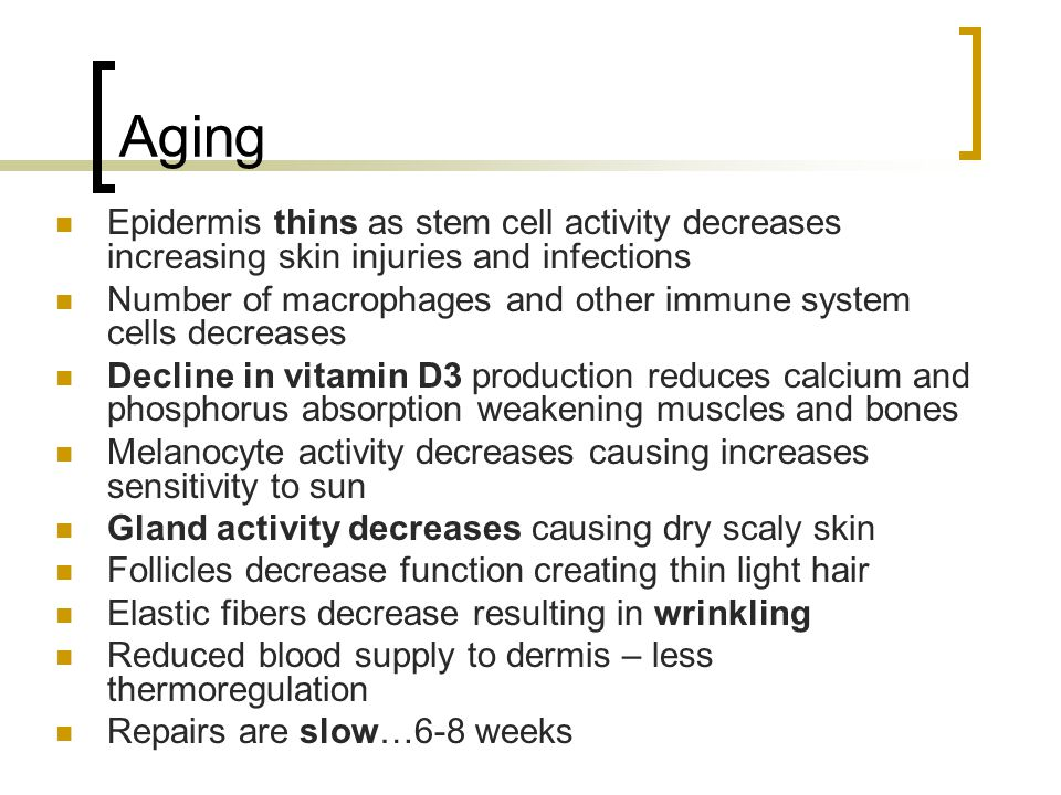Aging Epidermis thins as stem cell activity decreases increasing skin injuries and infections.