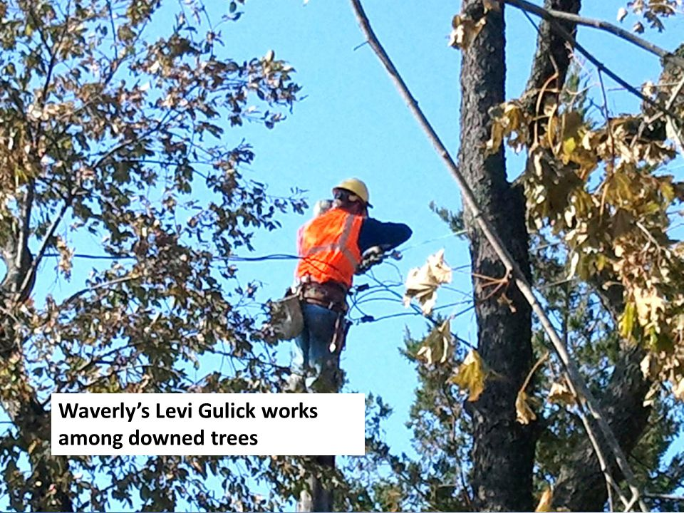Waverly's Levi Gulick works among downed trees