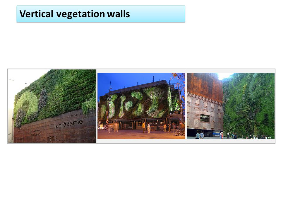 Vertical vegetation walls
