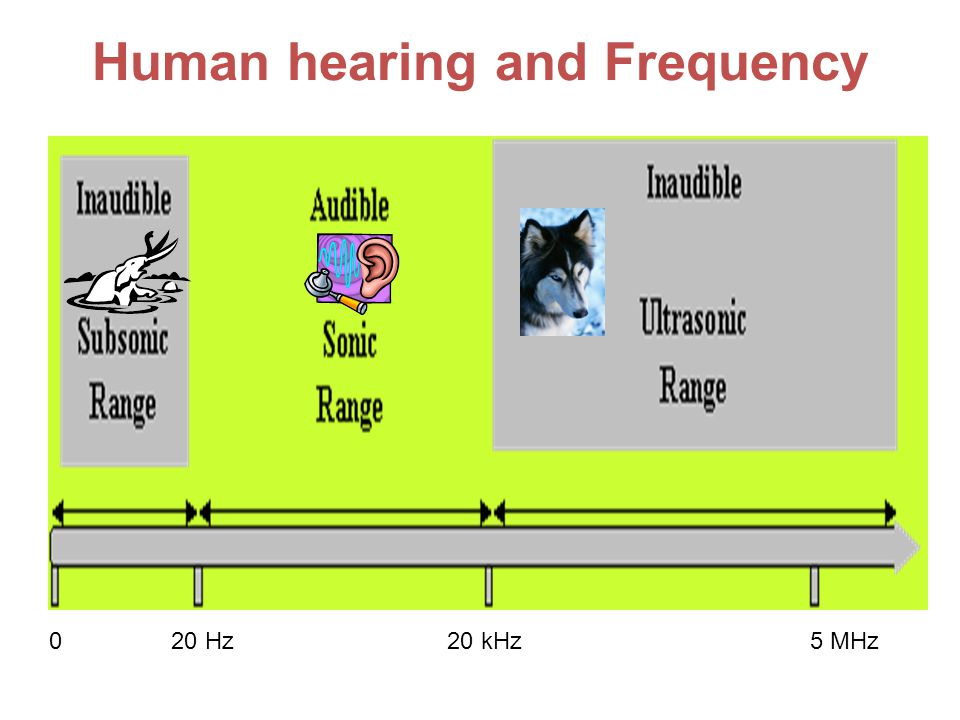 Human hearing and Frequency