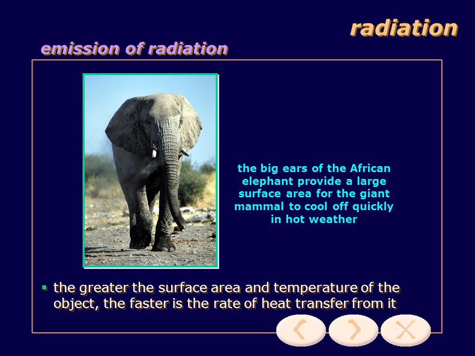 radiation emission of radiation