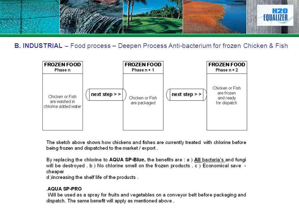 B. INDUSTRIAL – Food process – Deepen Process Anti-bacterium for frozen Chicken & Fish