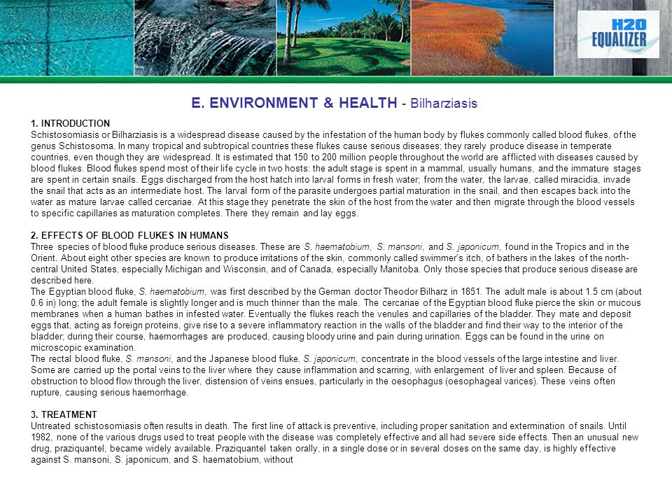 E. ENVIRONMENT & HEALTH - Bilharziasis