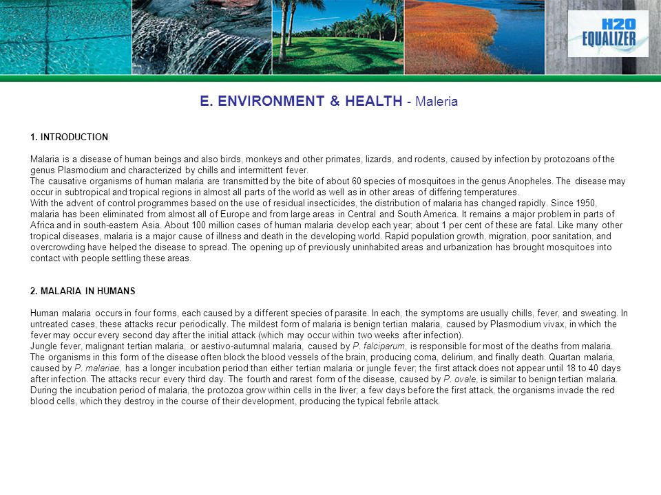 E. ENVIRONMENT & HEALTH - Maleria