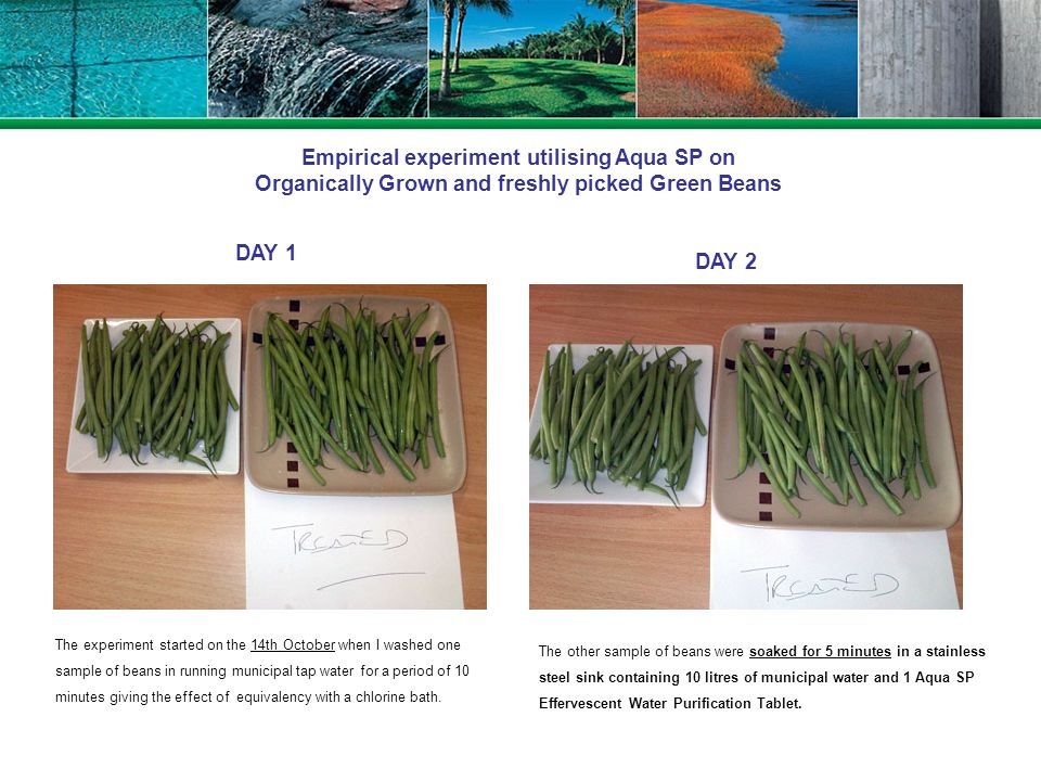 Empirical experiment utilising Aqua SP on Organically Grown and freshly picked Green Beans