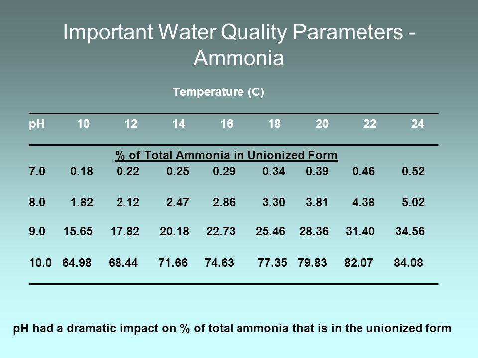 Important Water Quality Parameters - Ammonia