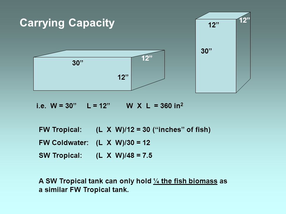 Carrying Capacity 12 12 30 12 30 12