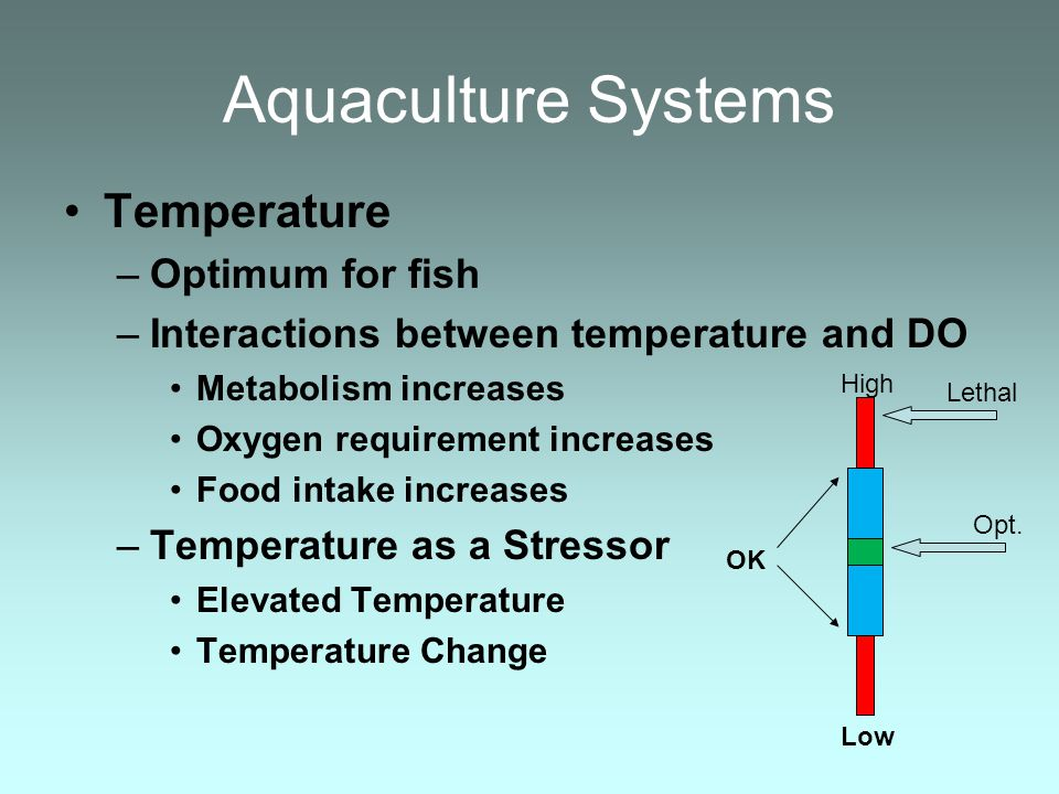 Aquaculture Systems Temperature Optimum for fish