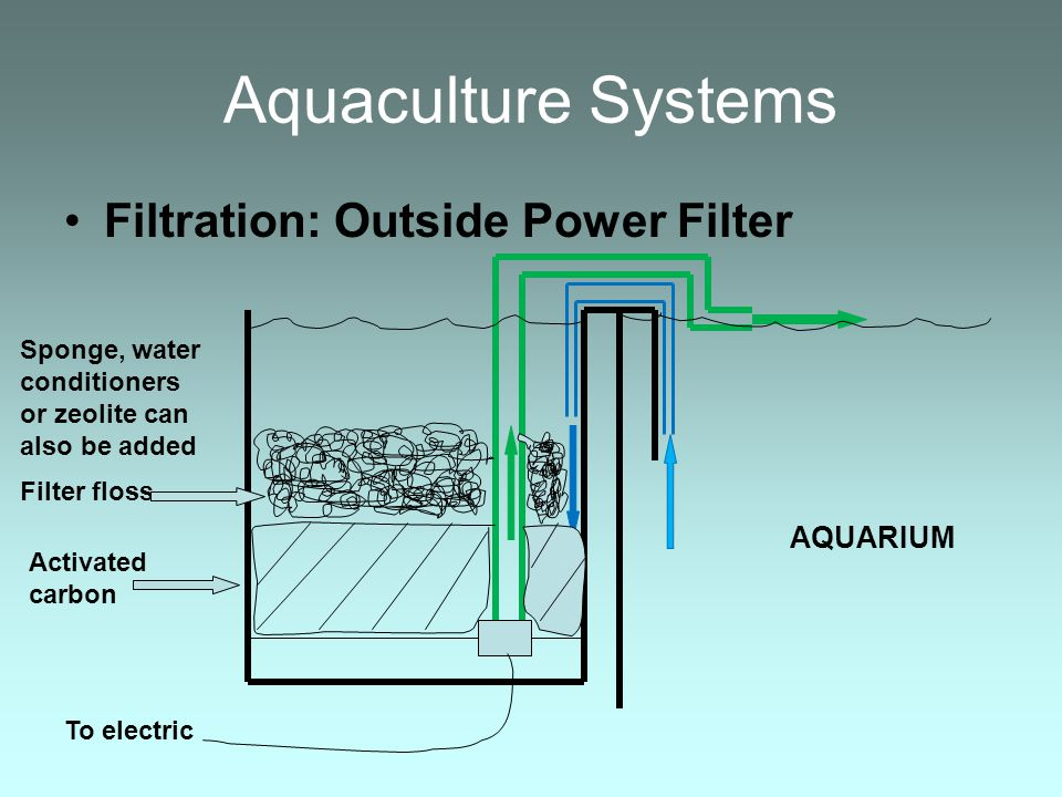 Aquaculture Systems Filtration: Outside Power Filter AQUARIUM