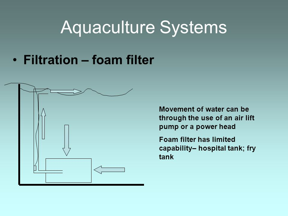 Aquaculture Systems Filtration – foam filter