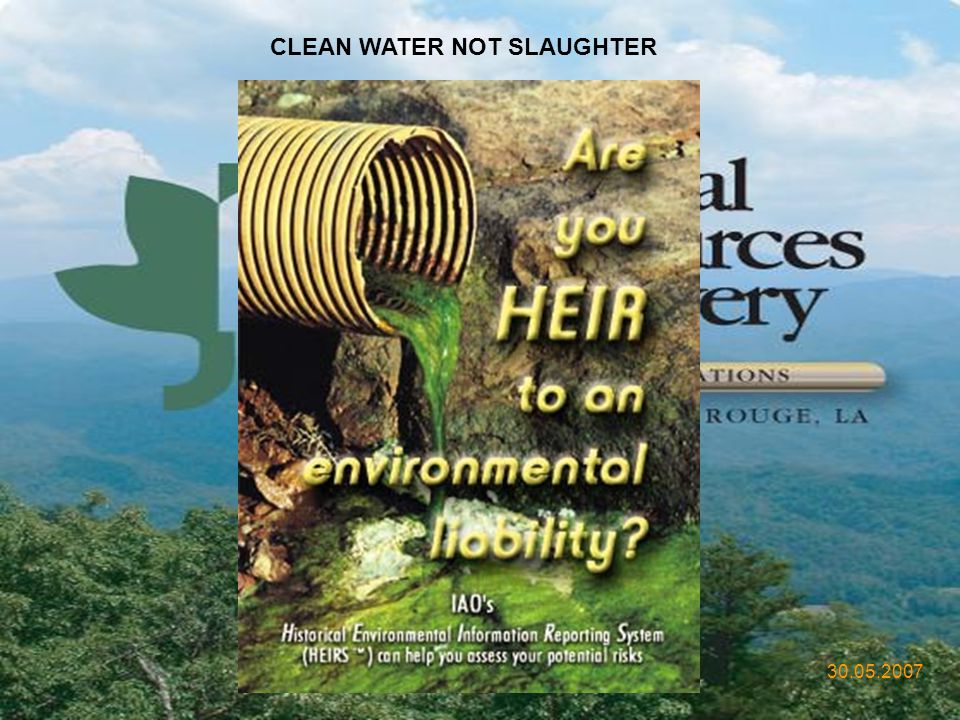 CLEAN WATER NOT SLAUGHTER