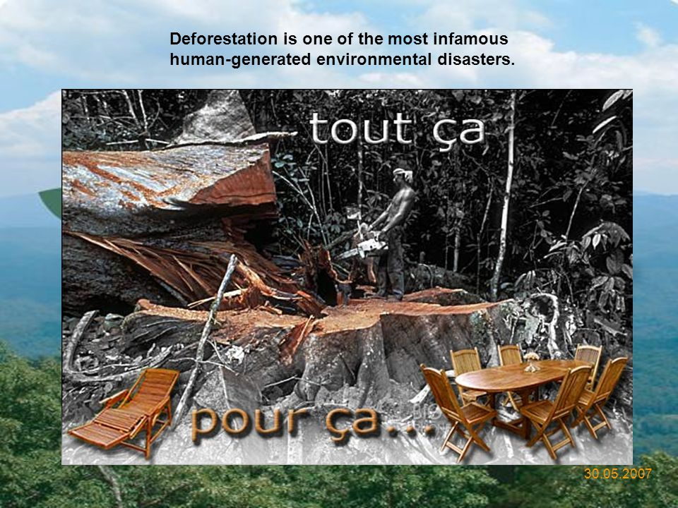 Deforestation is one of the most infamous human-generated environmental disasters.