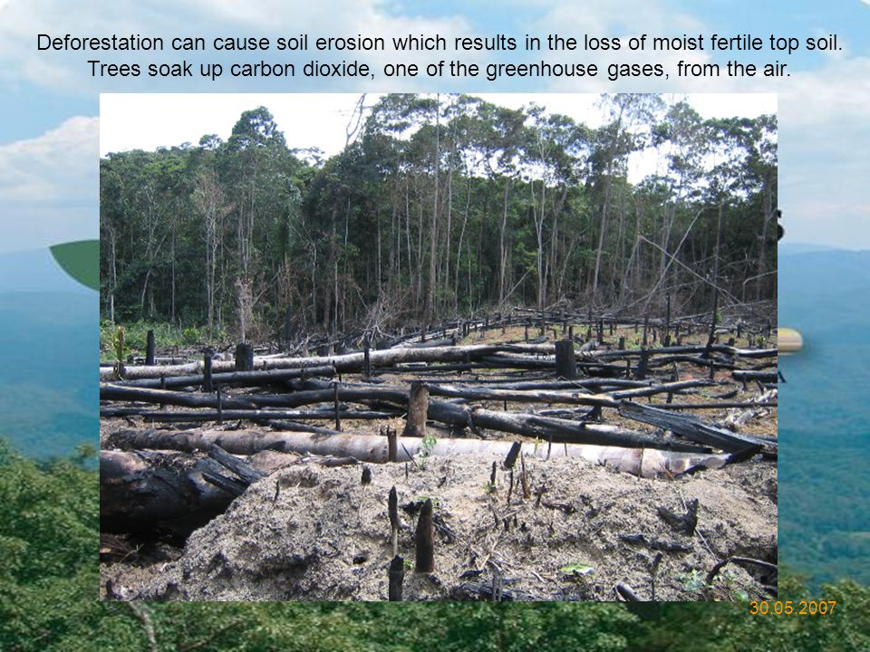 Deforestation can cause soil erosion which results in the loss of moist fertile top soil.