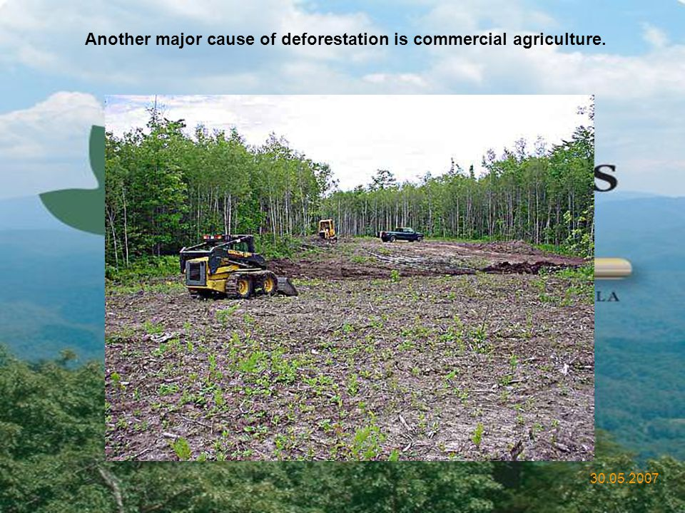 Another major cause of deforestation is commercial agriculture.