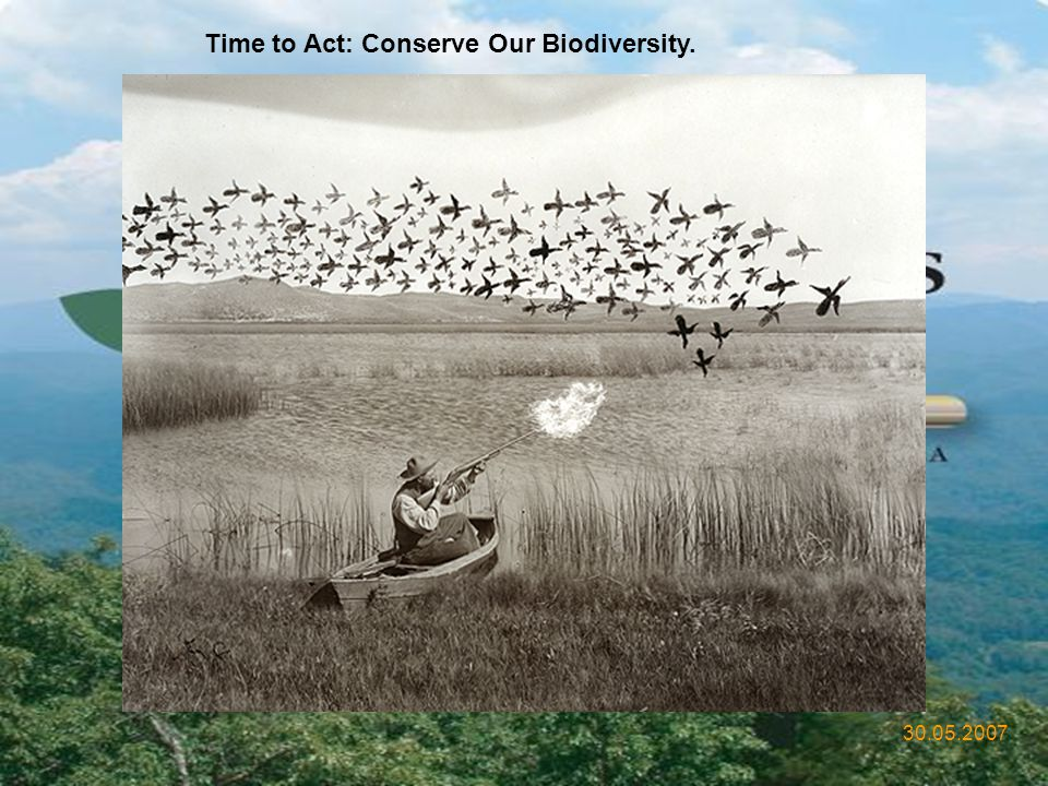 Time to Act: Conserve Our Biodiversity.