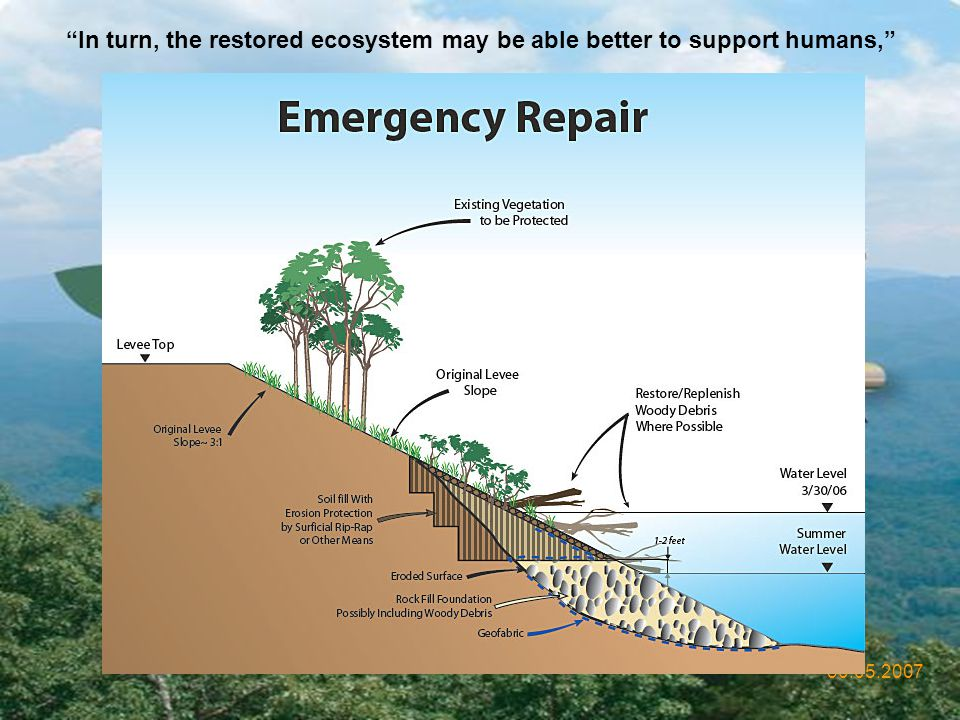 In turn, the restored ecosystem may be able better to support humans,