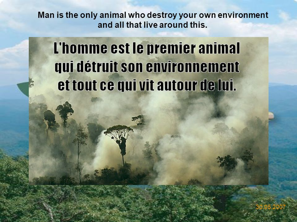 Man is the only animal who destroy your own environment