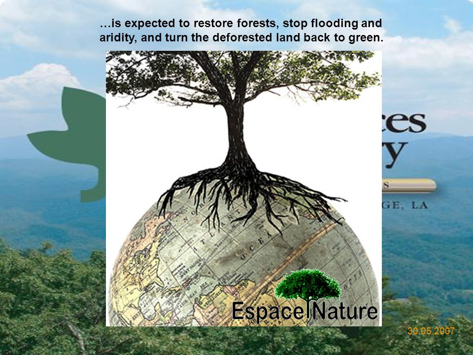 …is expected to restore forests, stop flooding and aridity, and turn the deforested land back to green.