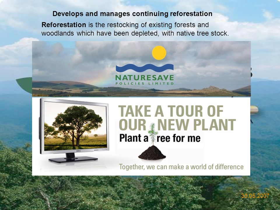 Develops and manages continuing reforestation