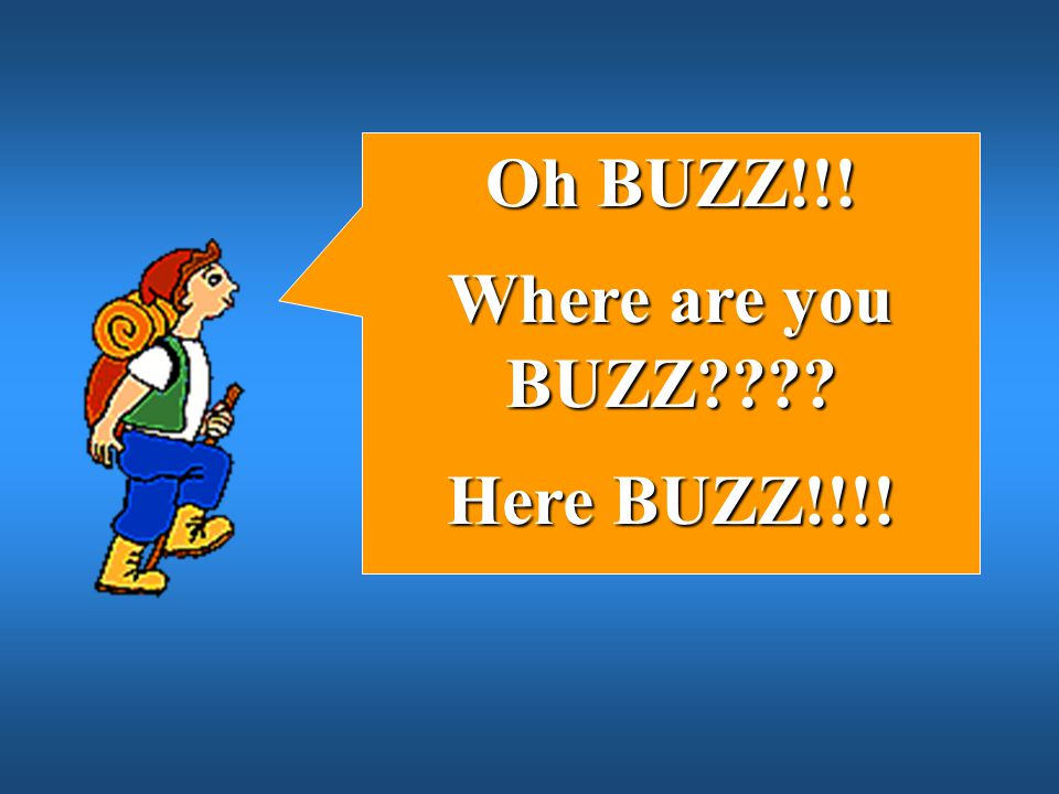 Oh BUZZ!!! Where are you BUZZ Here BUZZ!!!!