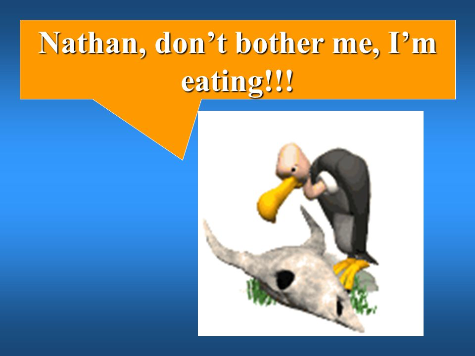 Nathan, don't bother me, I'm eating!!!