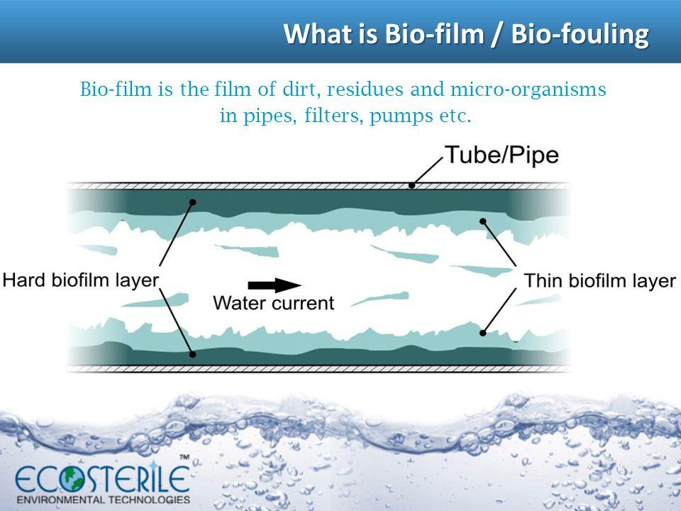 What is Bio-film / Bio-fouling