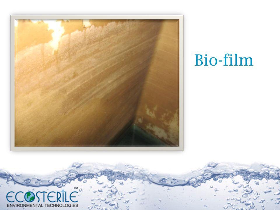 Bio-film 21