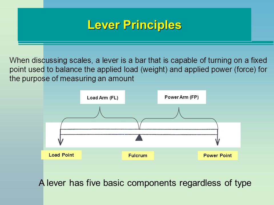 A lever has five basic components regardless of type