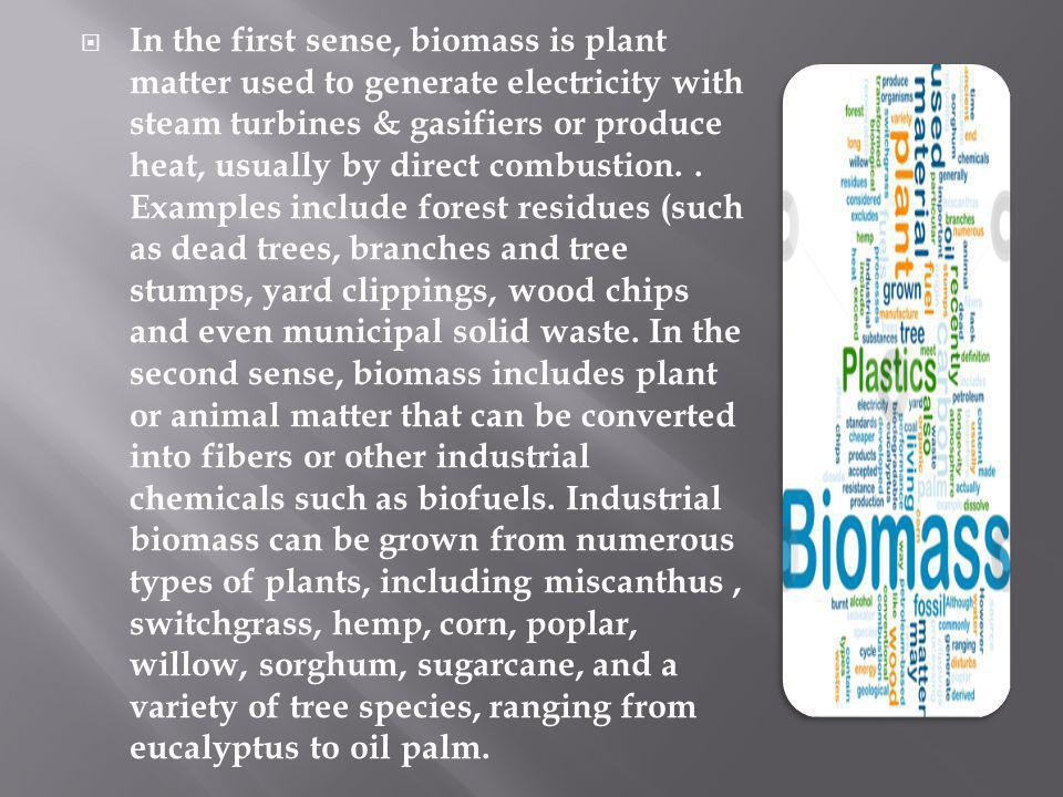 In the first sense, biomass is plant matter used to generate electricity with steam turbines & gasifiers or produce heat, usually by direct combustion.