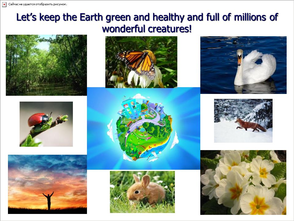 Let's keep the Earth green and healthy and full of millions of wonderful creatures!