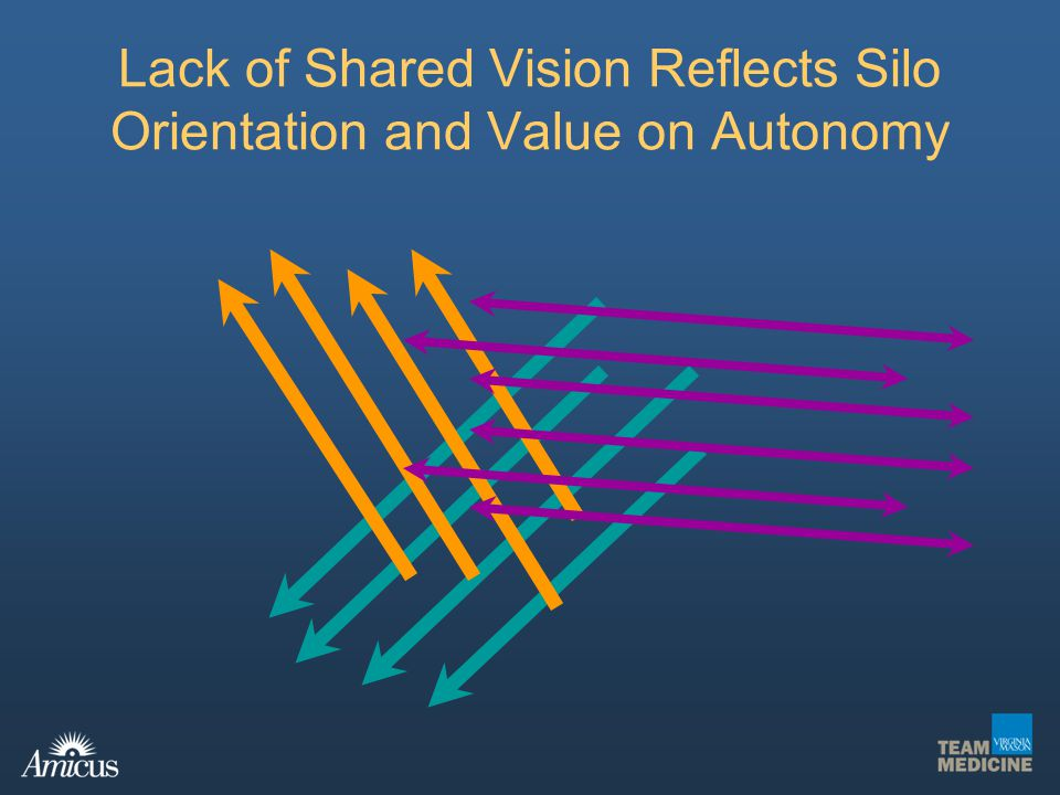 Lack of Shared Vision Reflects Silo Orientation and Value on Autonomy