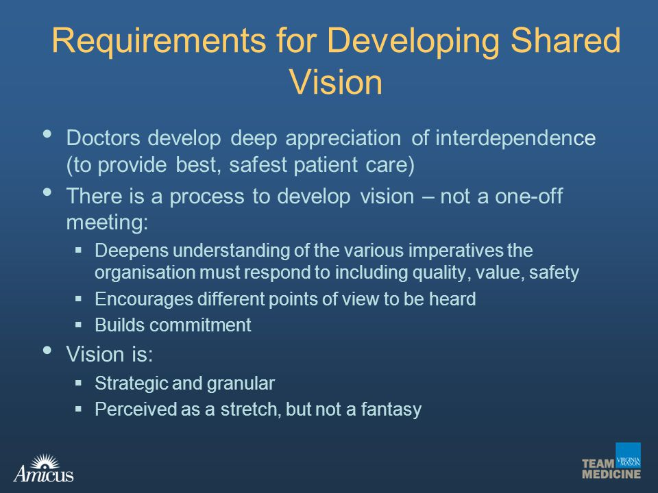 Requirements for Developing Shared Vision