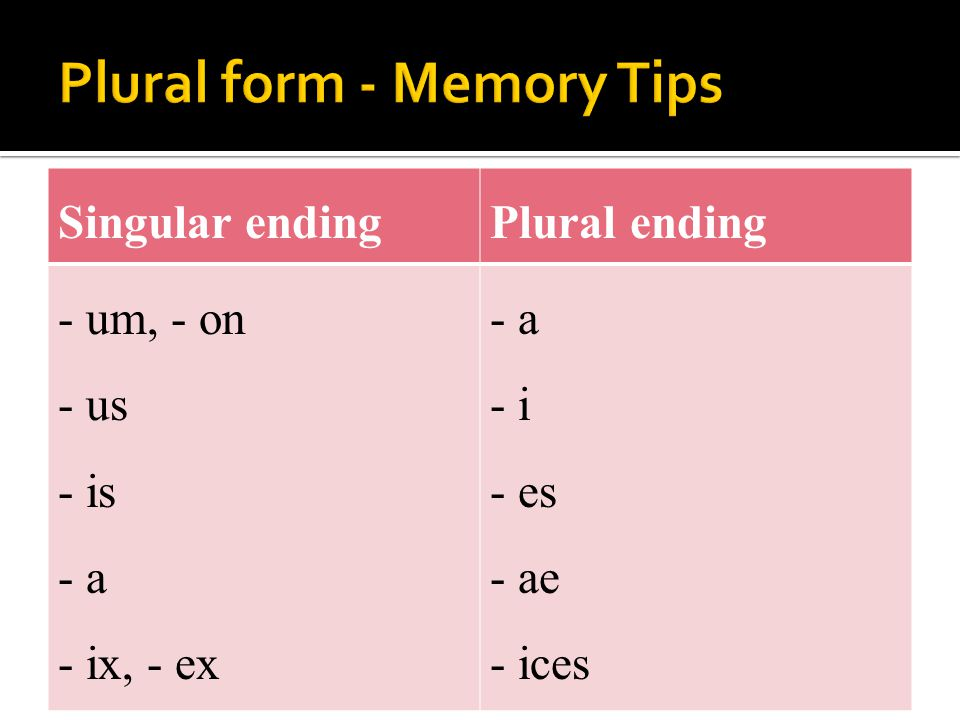 Plural form - Memory Tips