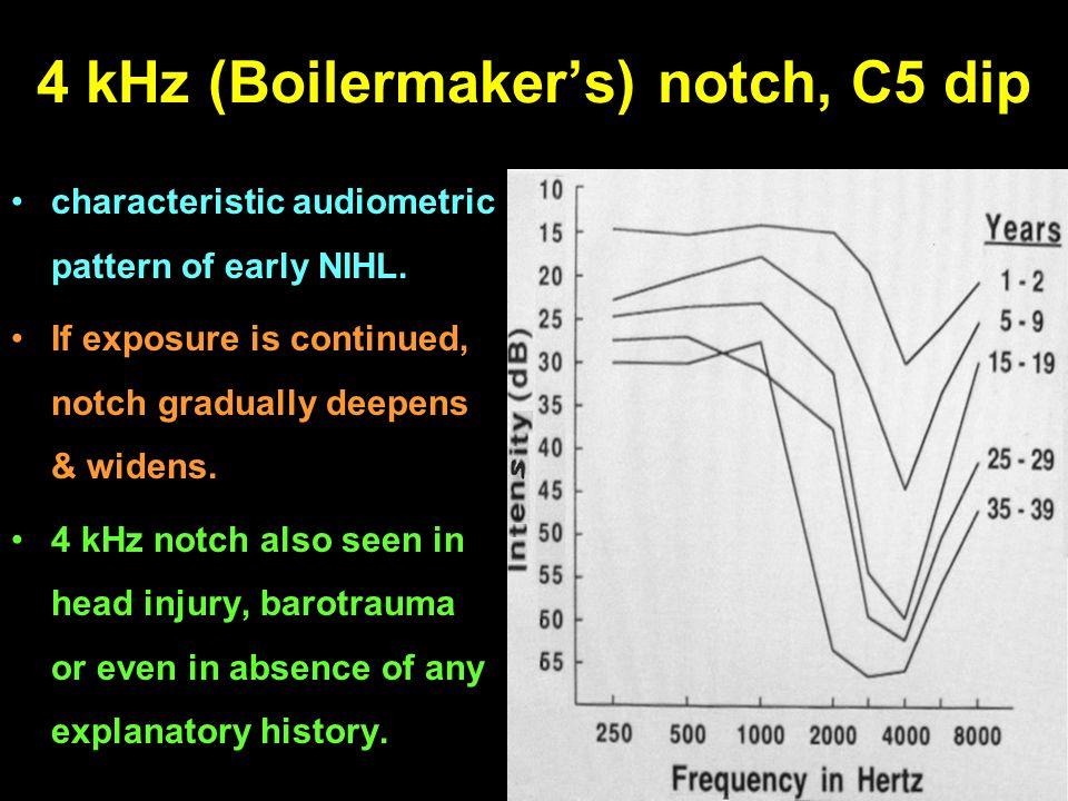 4 kHz (Boilermaker's) notch, C5 dip