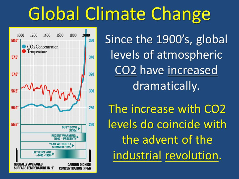 Global Climate Change Since the 1900's, global levels of atmospheric CO2 have increased dramatically.