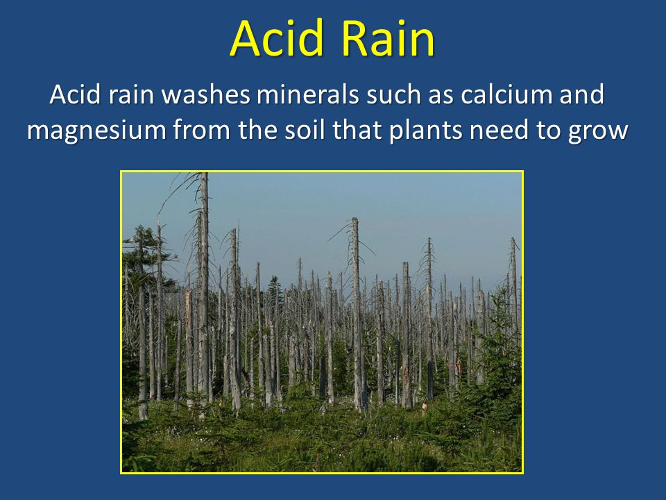 Acid Rain Acid rain washes minerals such as calcium and magnesium from the soil that plants need to grow.
