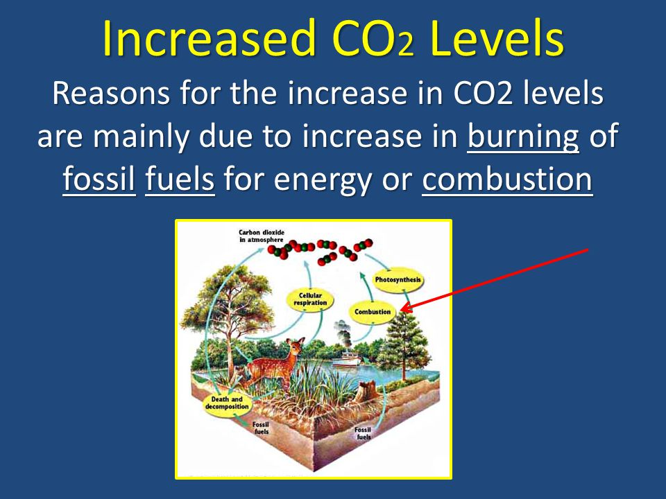 Increased CO2 Levels Reasons for the increase in CO2 levels are mainly due to increase in burning of fossil fuels for energy or combustion.
