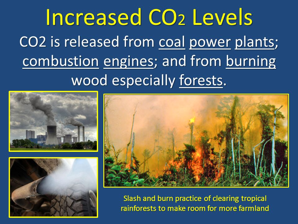 Increased CO2 Levels CO2 is released from coal power plants; combustion engines; and from burning wood especially forests.