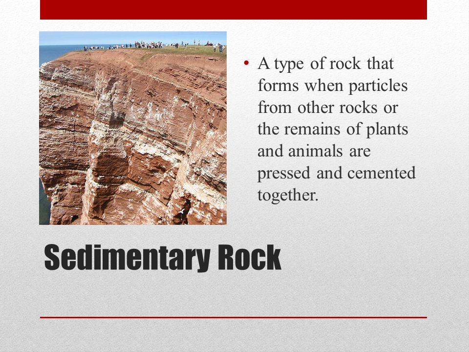 A type of rock that forms when particles from other rocks or the remains of plants and animals are pressed and cemented together.