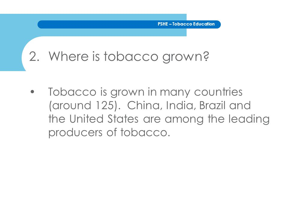 Where is tobacco grown