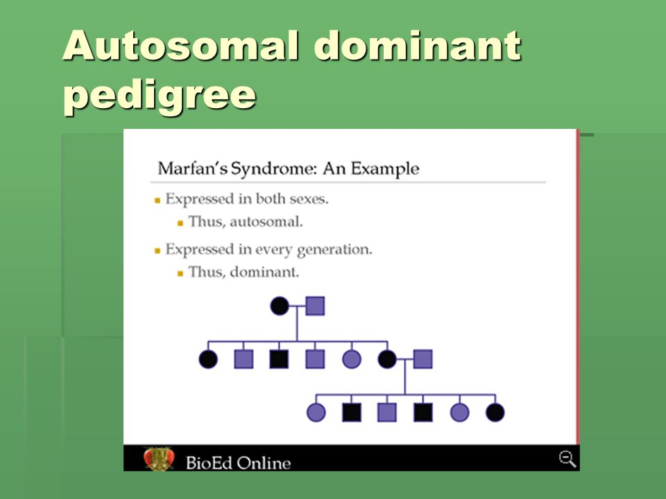 Autosomal dominant pedigree