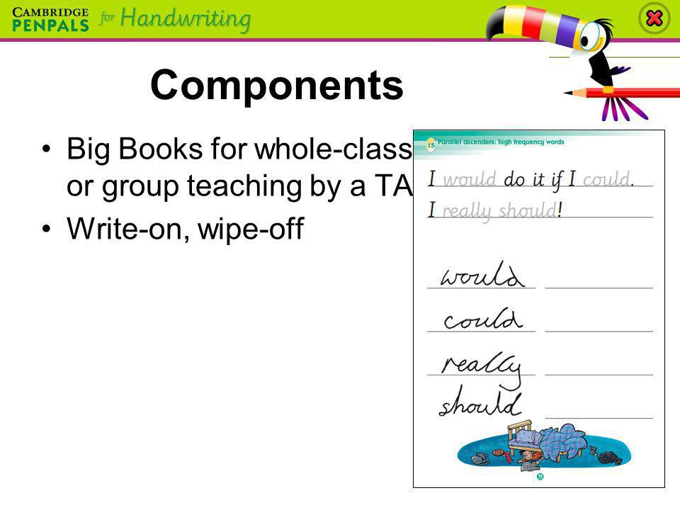 Components Big Books for whole-class or group teaching by a TA