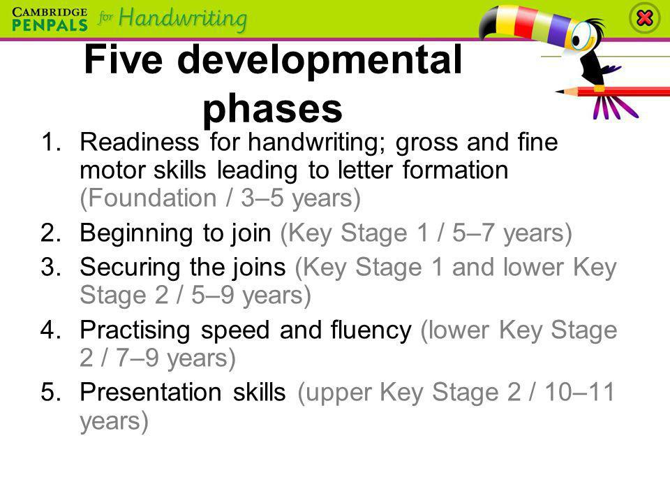 Five developmental phases