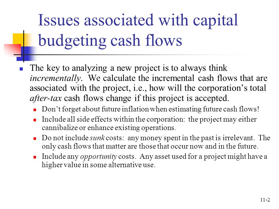 Issues associated with capital budgeting cash flows