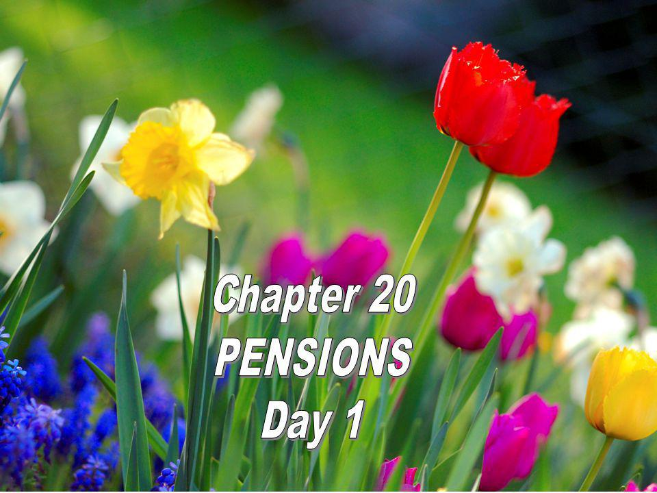 Chapter 20 PENSIONS Day 1
