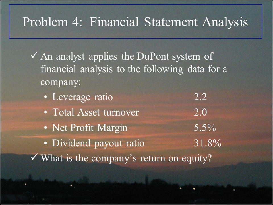 Problem 4: Financial Statement Analysis