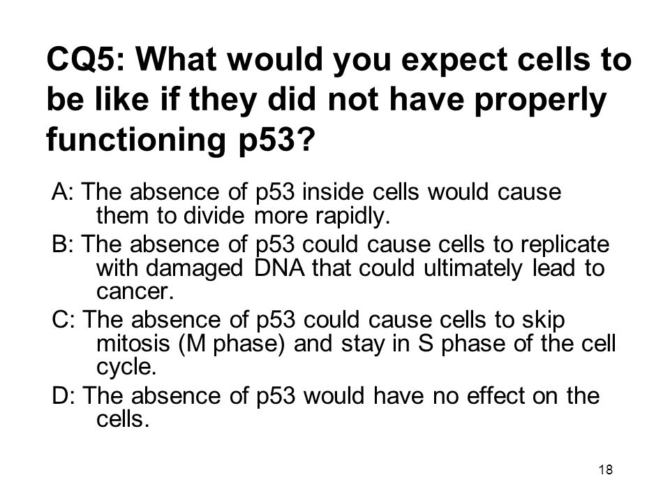 CQ5: What would you expect cells to be like if they did not have properly functioning p53