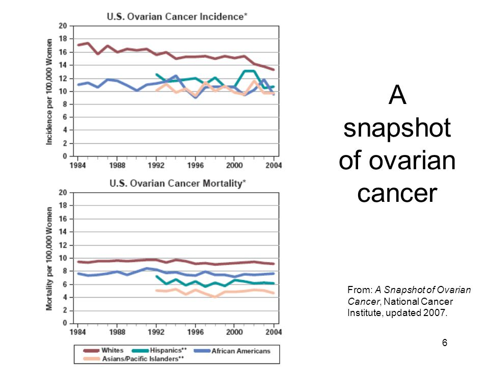 A snapshot of ovarian cancer